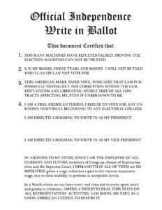 write_in_ballot